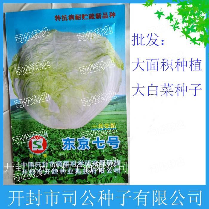 蔬菜种子种苗批发东京7号白菜种子成亩种植白菜种子