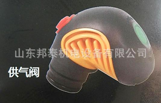 3C消防�J�C呼々吸器配件RHZK6.8消防呼吸器面罩 救生器�杀�黑色�N子材全面罩示例�D10