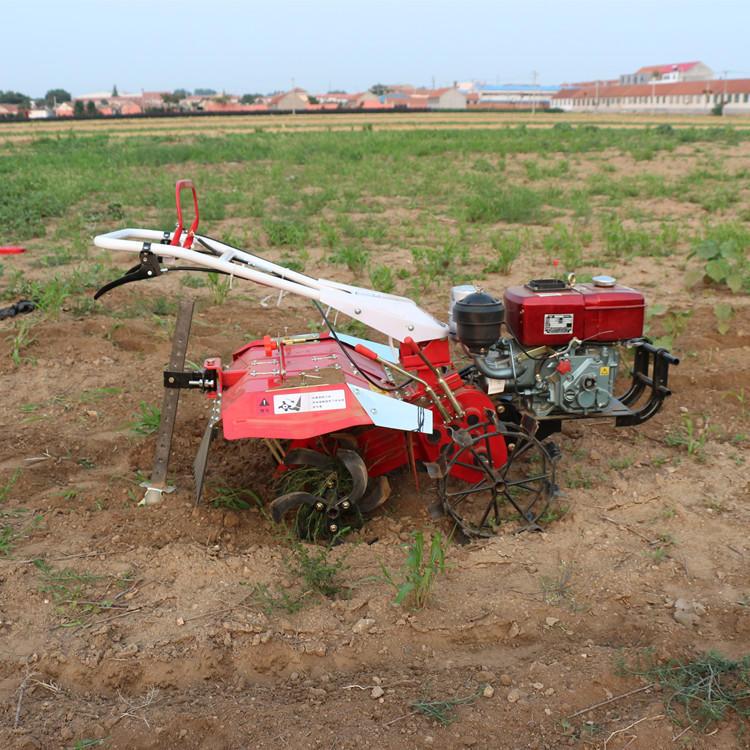 新型后旋式四驱微耕机 大棚翻地松土机 ZC-188型手扶式柴油开沟机志成机械示例图5
