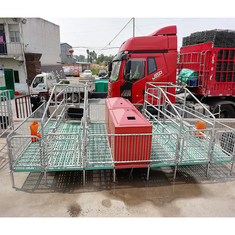 吉星標準雙產位 母豬產床 500公斤以上單套產床 飼喂設備