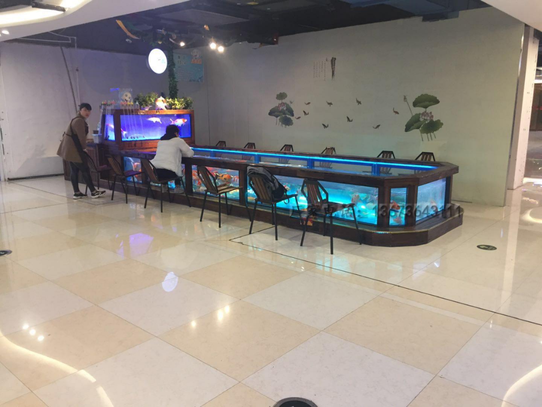 吃奶鱼和旋转秋千鱼升级进化活鱼 们玩的开心吃奶鱼也叫长寿鱼喂奶鱼,娃娃鱼或者 鱼,溜溜鱼,奶嘴鱼示例图13